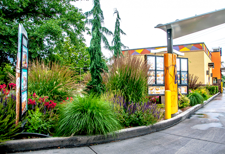 Taco bell state street stack rock group landscape for Landscape design boise