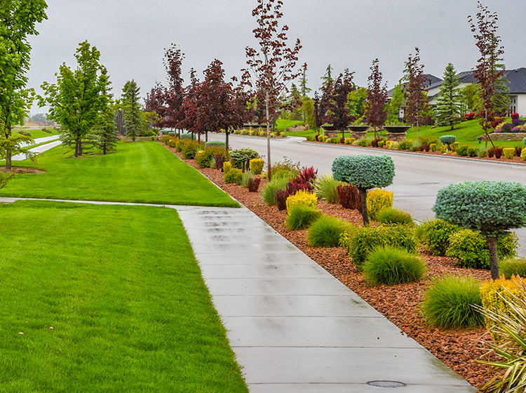 landscape architect, salt lake city